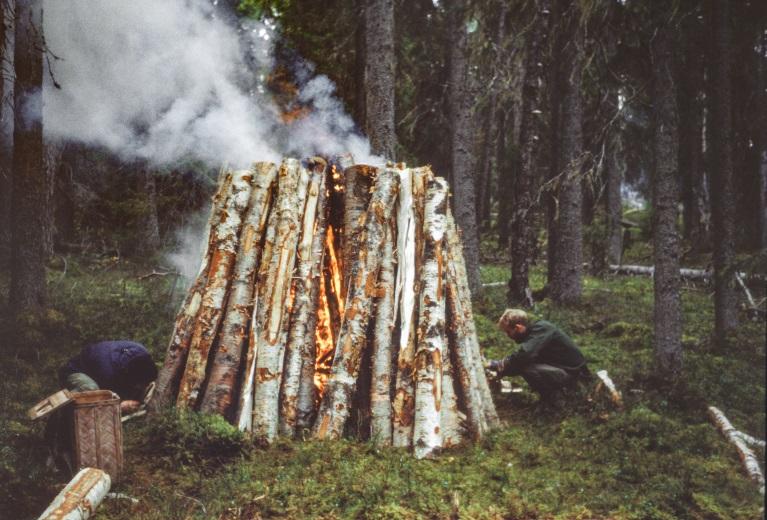 Pottaskebränning från ett forskningsprojekt som utfördes i Kulbäcksliden 1992