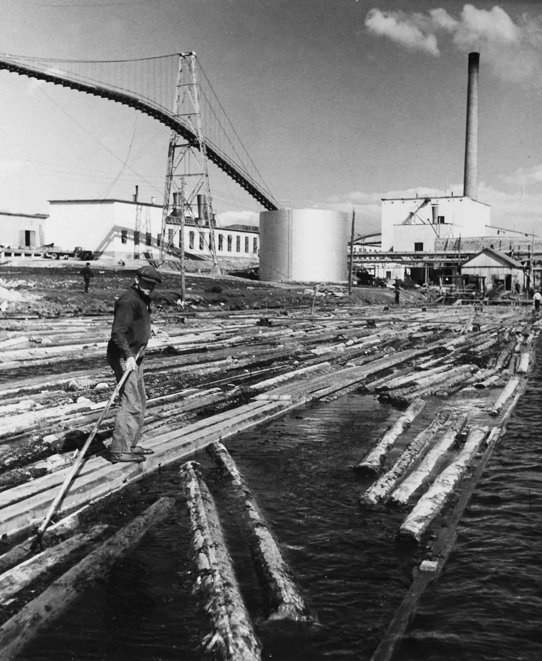 Gustaf Marklund sorterar timmer på älven vid Scharins.
